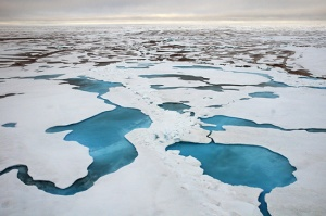 Chukchi Sea ice - photo courtesy NOAA - photo by Karen E. Frey