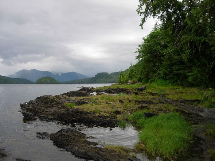 Tongass National Forest - photo by Mark Brennan