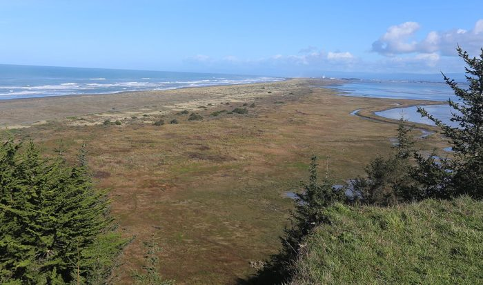 looking-north-from-lighthouse-ranch-south-spit-of-humboldt-bay-photo-courtesy-blm